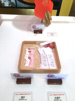 hoshoyama3