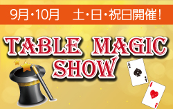 テーブルマジックショー